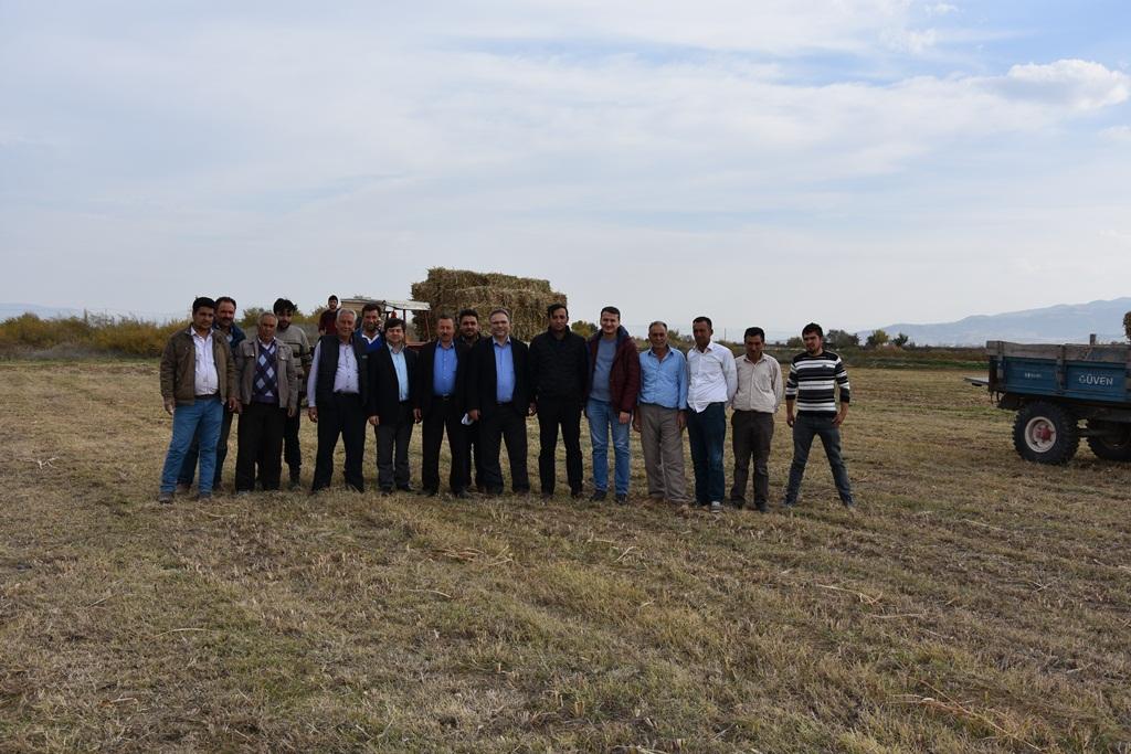 Alaşehir Belediyesinden Tarım ve Hayvancılığa 150 ton Ücretsiz Yem Desteği