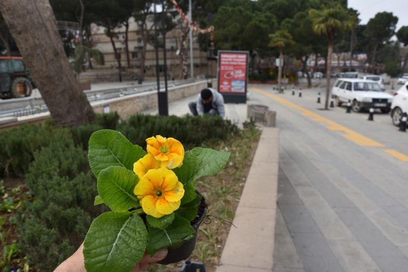 Park ve Bahçeler Rengarenk Çiçeklerle Şenlendi
