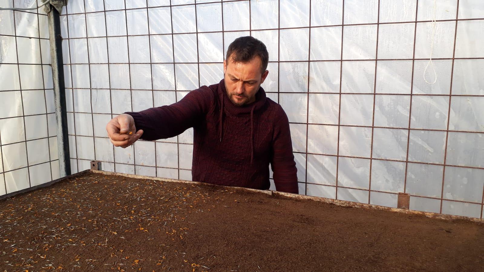 Yaklaşık 1 Milyon TL Tasarruf Edeceğiz  Artık Çiçek Tohumlarını Kendimiz Üretiyoruz