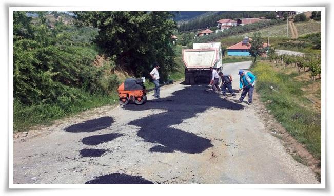 asfalt_yama (4)