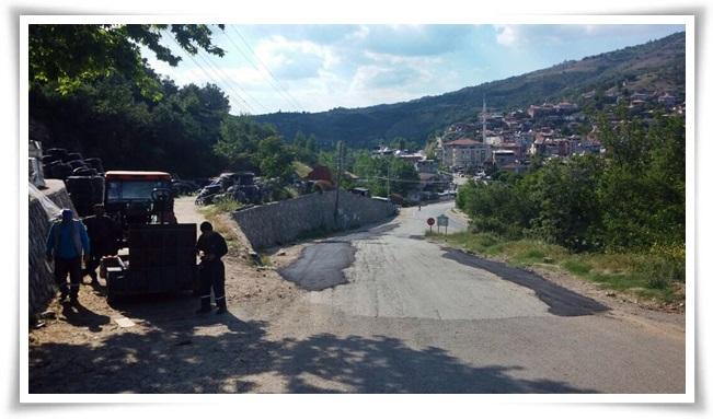 asfalt_yama (5)